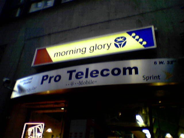 morningglorytele