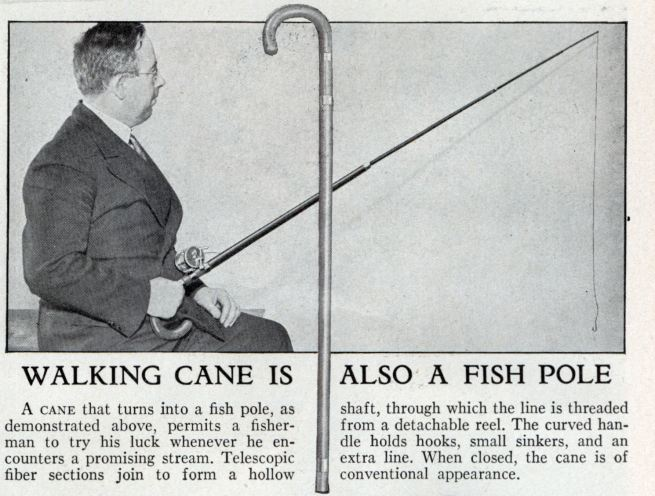 fishing_pole_cane