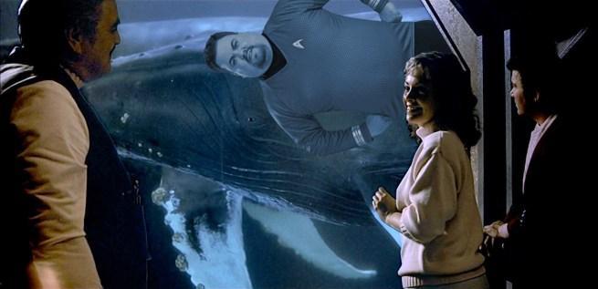 jon-Whales